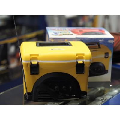 Mini Cooler AM/FM Radio Cooler