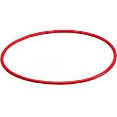 Olympus POL-029 O-RING FOR PT-029