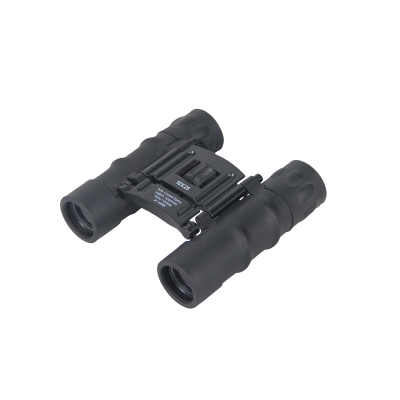 FALCON OPTICS ΚΙΑΛΙΑ Compact 10x25mm , Black